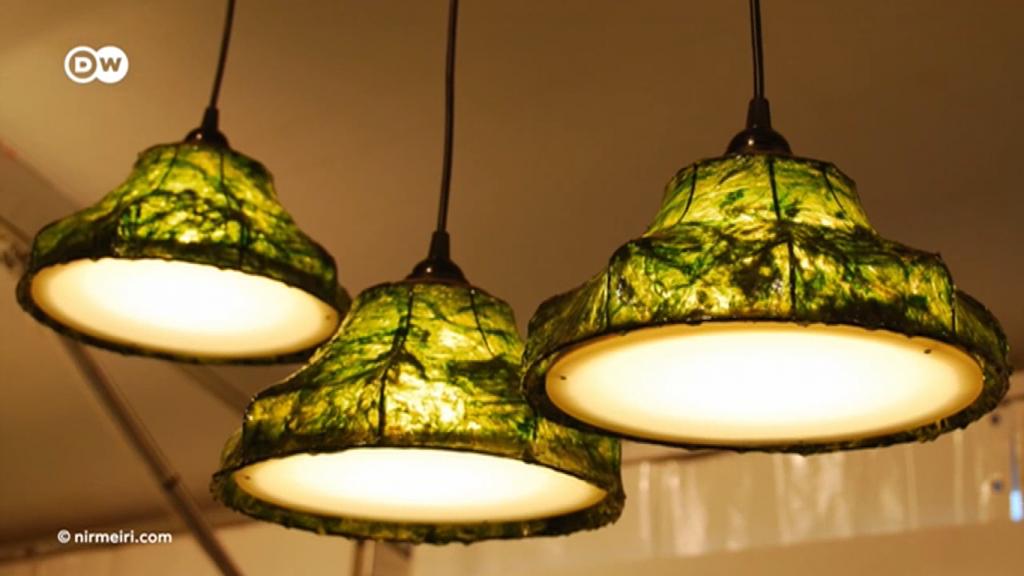 Luminária de alga e outras tendências do design