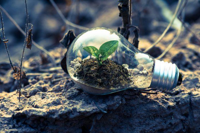 Iluminação Circular: conheça o movimento que pode mudar o mercado unindo luz e sustentabilidade